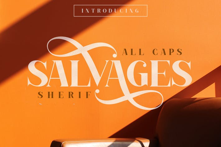 Thumbnail for SALVAGES BOLD | SERIF FONT