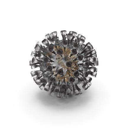 Roman Coronavirus