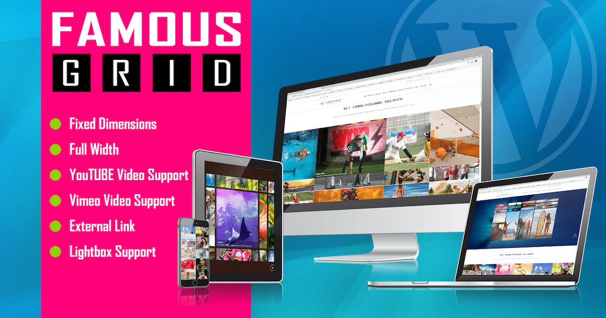 Download Famous - Responsive Image And Video Grid Gallery by LambertGroup