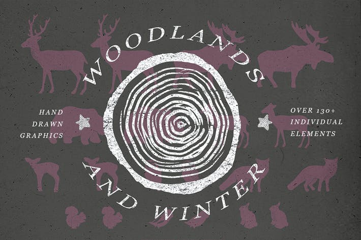 Thumbnail for Woodlands & Winter