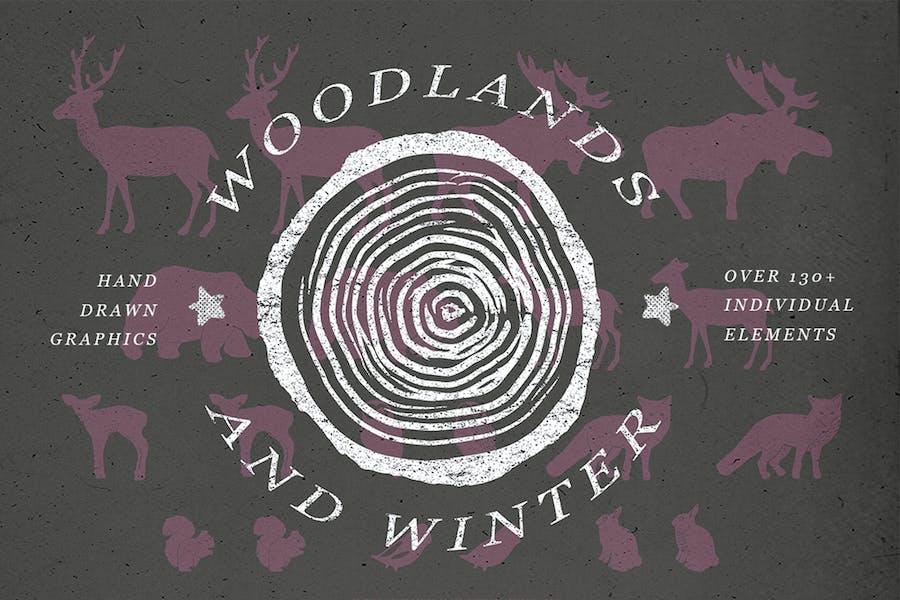 Woodlands & Winter