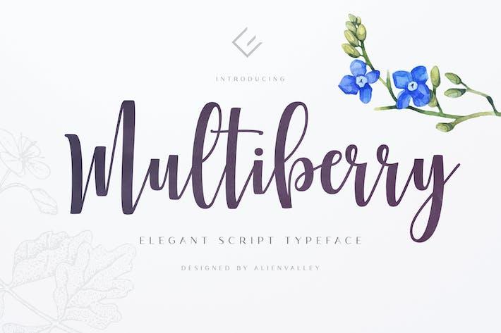 Thumbnail for Multiberry - Script Font