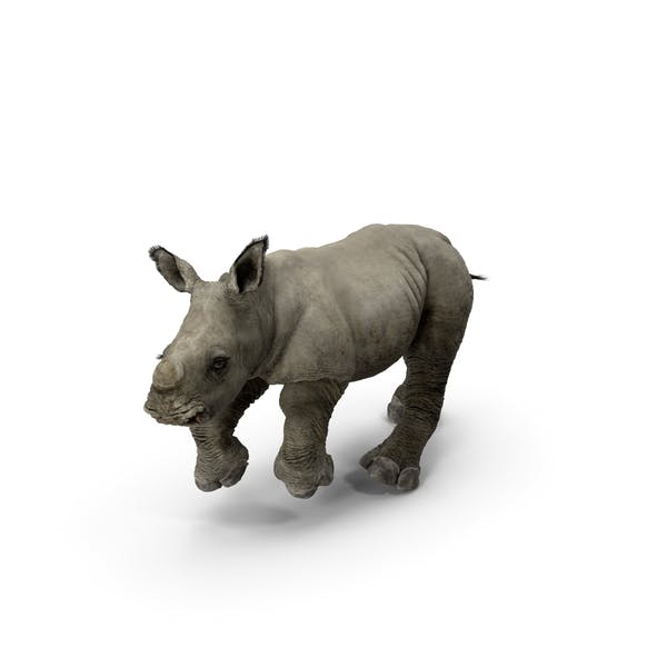 Rhino Baby Running Pose Fur