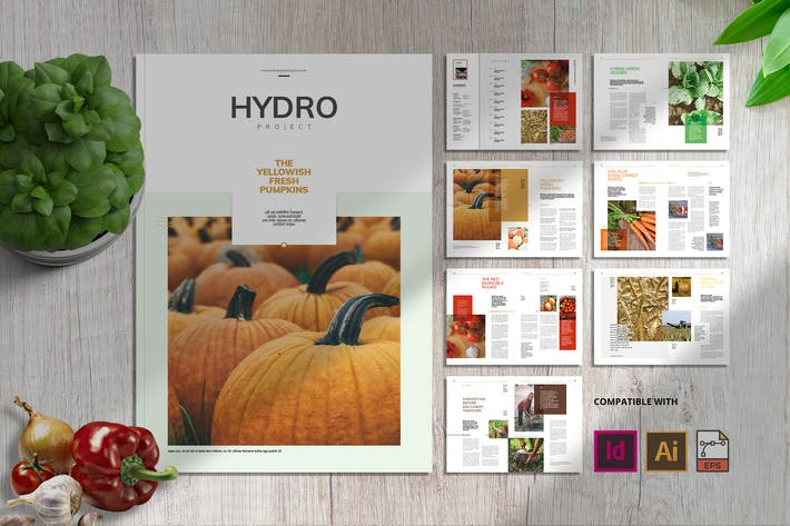 Thumbnail for Hydro Project | Magazine Template