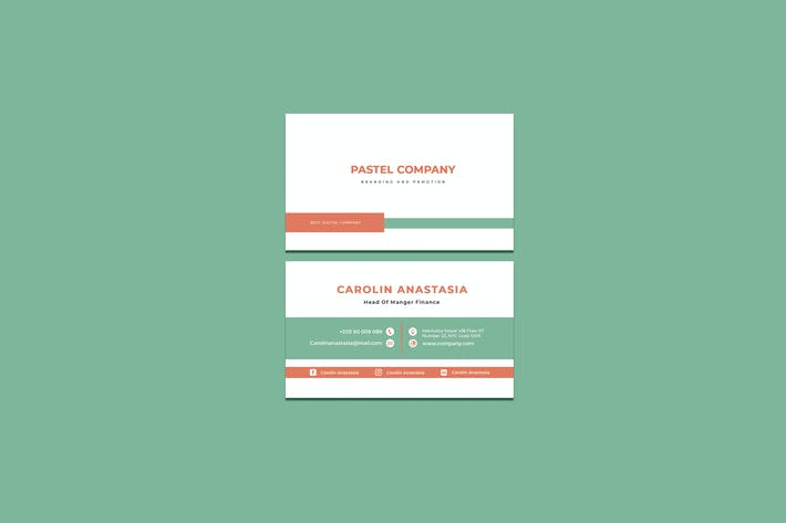 Pastel Company Business Card