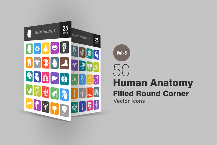 Thumbnail for 50 Icones de coin rond plat anatomie humaine