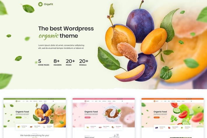 Cover Image For OrgaFit - Organic and Health WordPress Theme