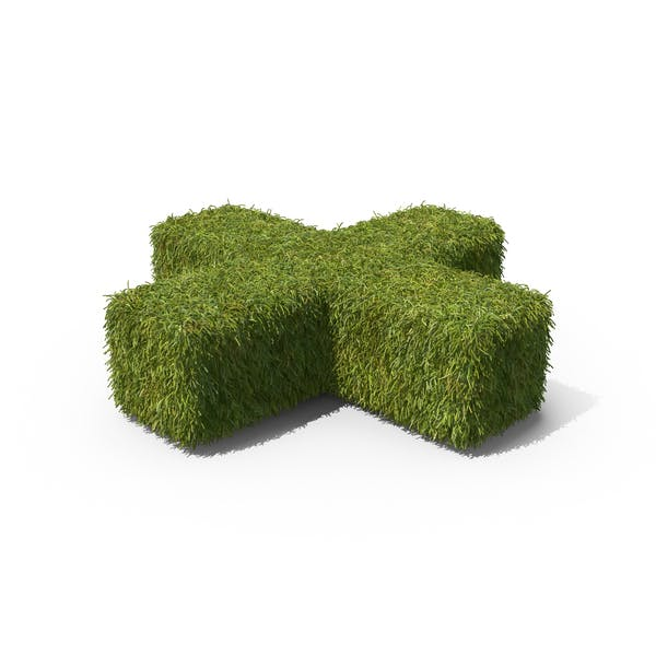 Thumbnail for Grass Plus Symbol on Ground
