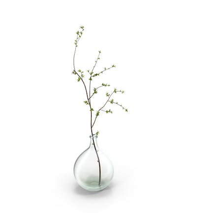 Vase with Single Branch