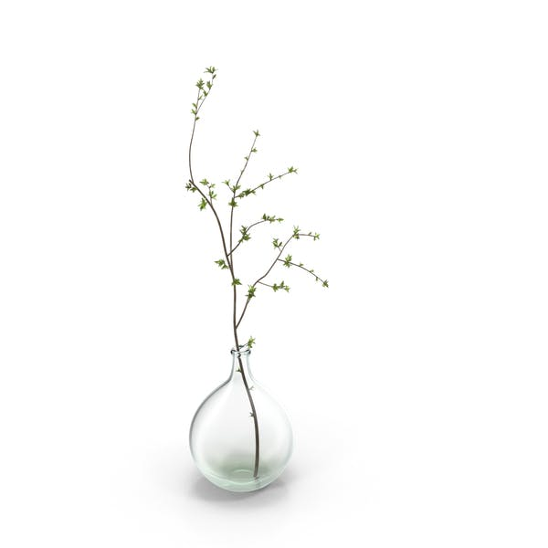 Cover Image for Vase with Single Branch