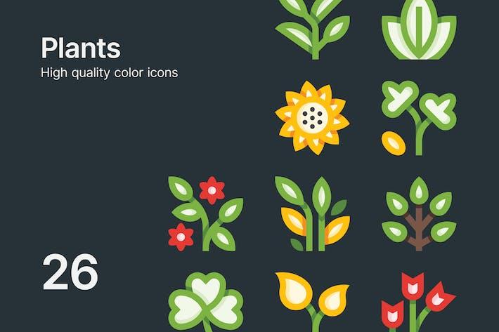 Pflanzen-Symbole