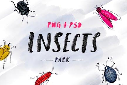 Insectes - Pack esquissé