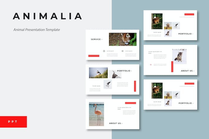 Thumbnail for Animalia - Animal Powerpoint Presentation Template