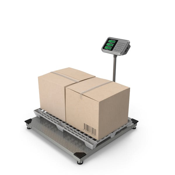 Warehouse Scale with Plastic Pallet and Parcels