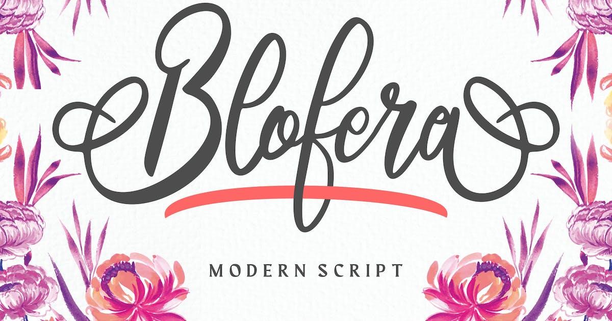 Download Blofera   Modern Script Font by Vunira