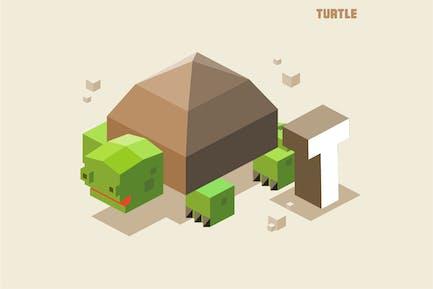 T für Schildkröte, Tieralphabet