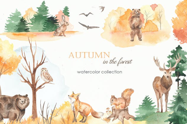 Autumn in the forest Watercolor collection