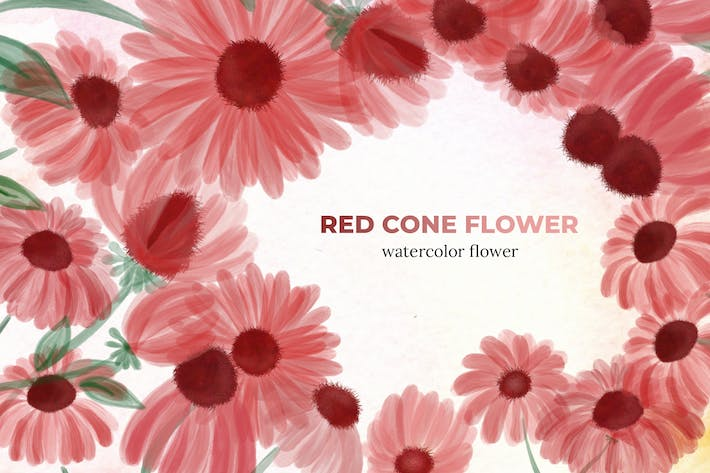 Thumbnail for 10 Watercolor Red Cone Flower