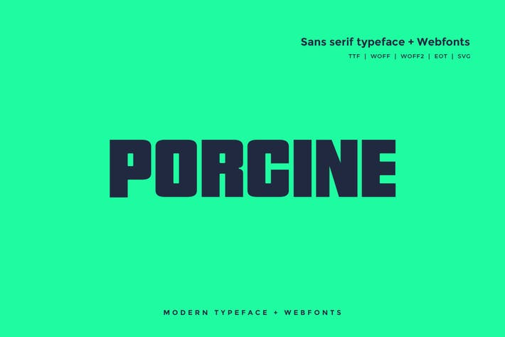 Thumbnail for Porcine - Modern typeface + WebFont