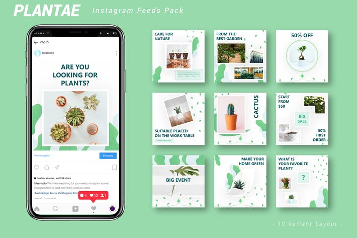 Thumbnail for Plantae - Pack de flux Instagram