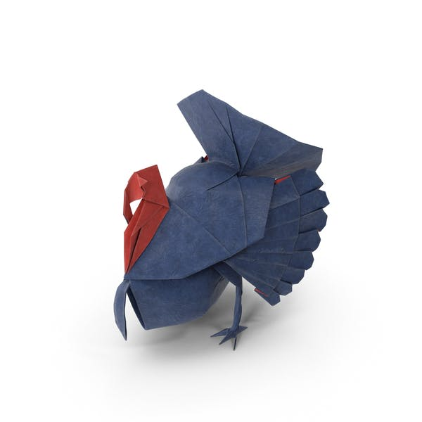Thumbnail for Origami Turkey