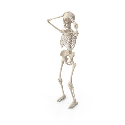 Skeleton Surrender Cobra