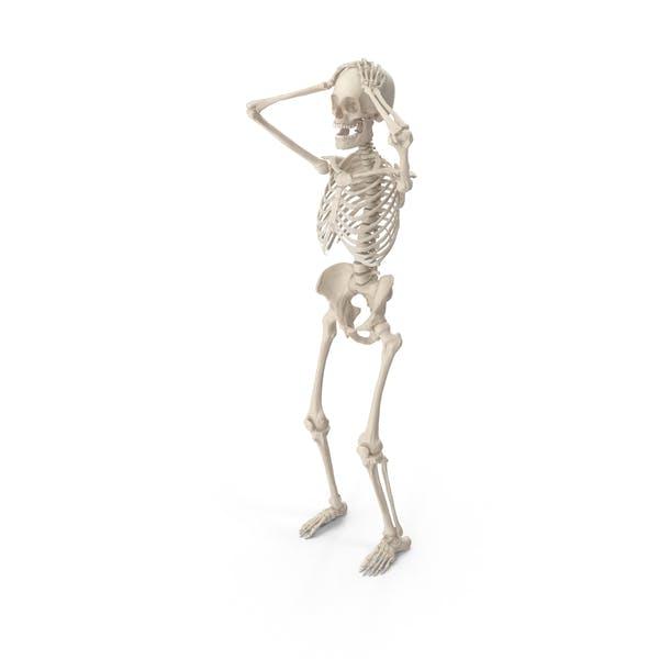 Скелет сдаться Кобра