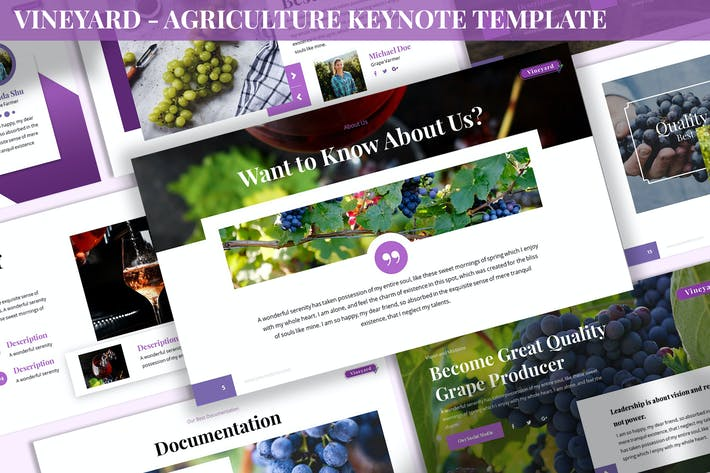Thumbnail for Vineyard - Agriculture Keynote Template