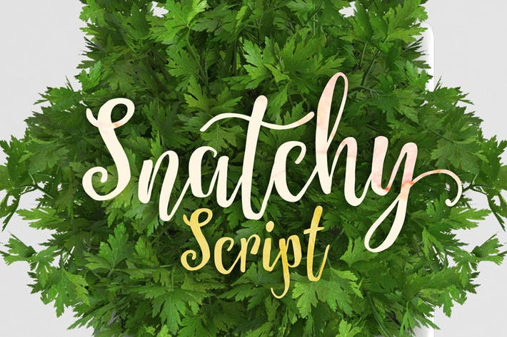 Cover Image For Snatchy