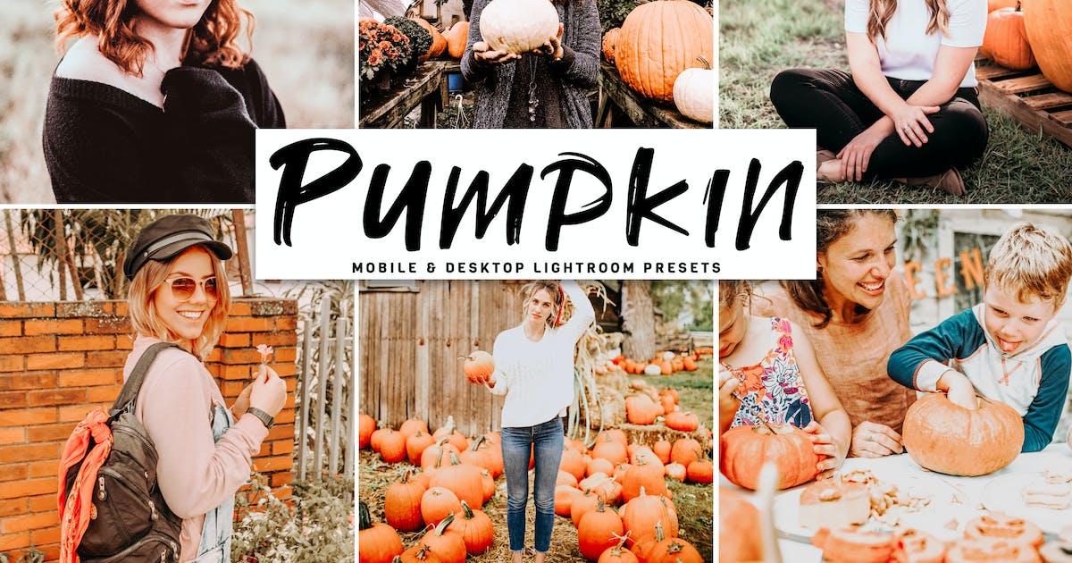 Download Pumpkin Mobile & Desktop Lightroom Presets by creativetacos