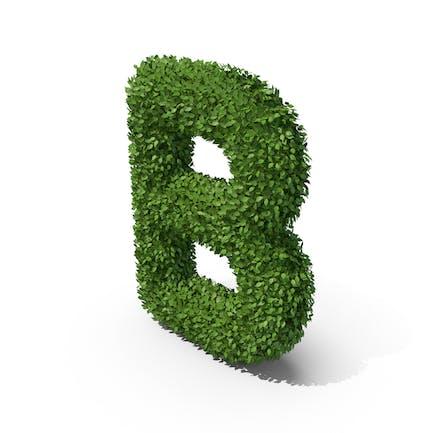 Letra B en forma de seto