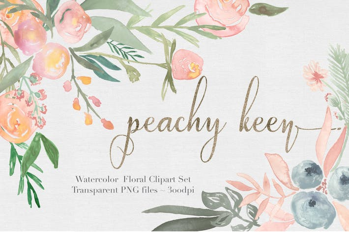 Thumbnail for Peachy Keen Watercolor clipart Set