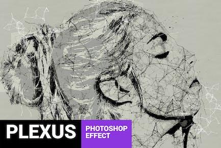 Skeletum - Plexus Art Photoshop Action