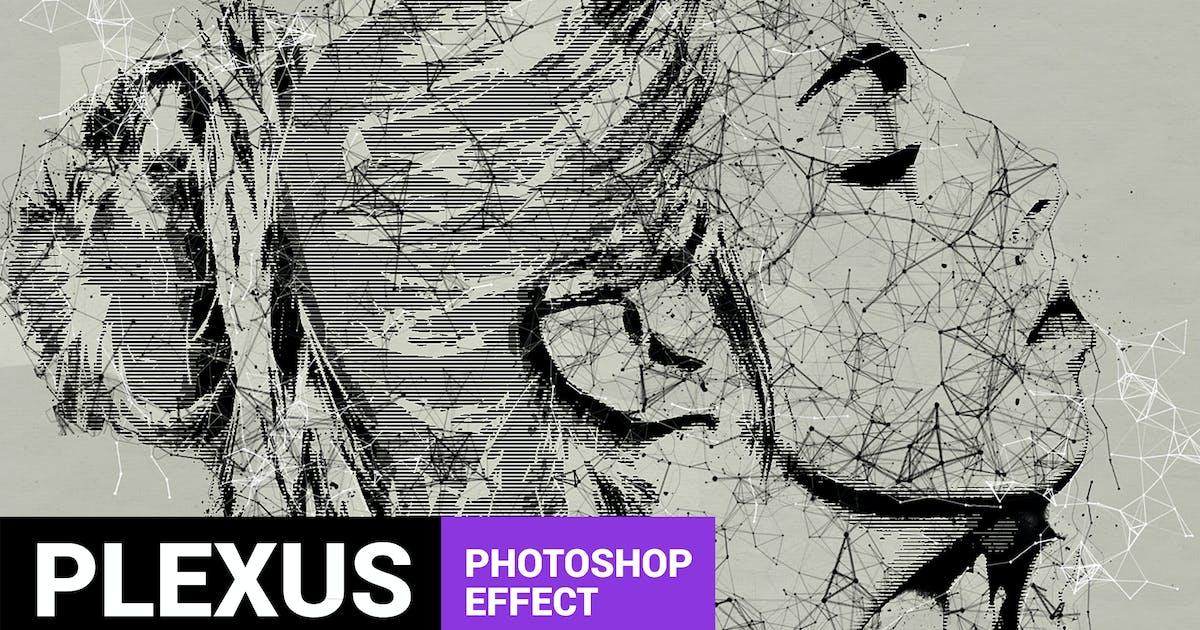 Download Skeletum - Plexus Art Photoshop Action by profactions