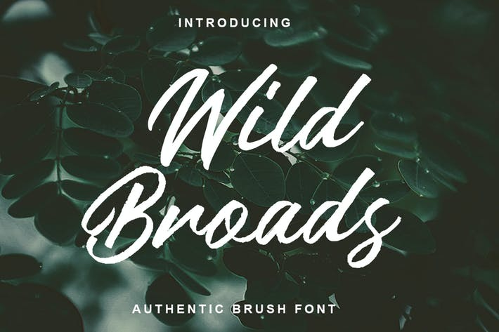 Thumbnail for Wild Broads - Fuente de pincel auténtico