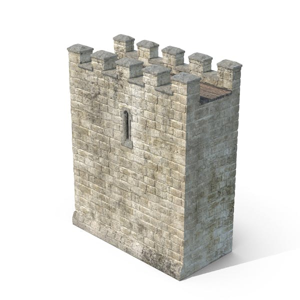 Thumbnail for Castle Wall Section