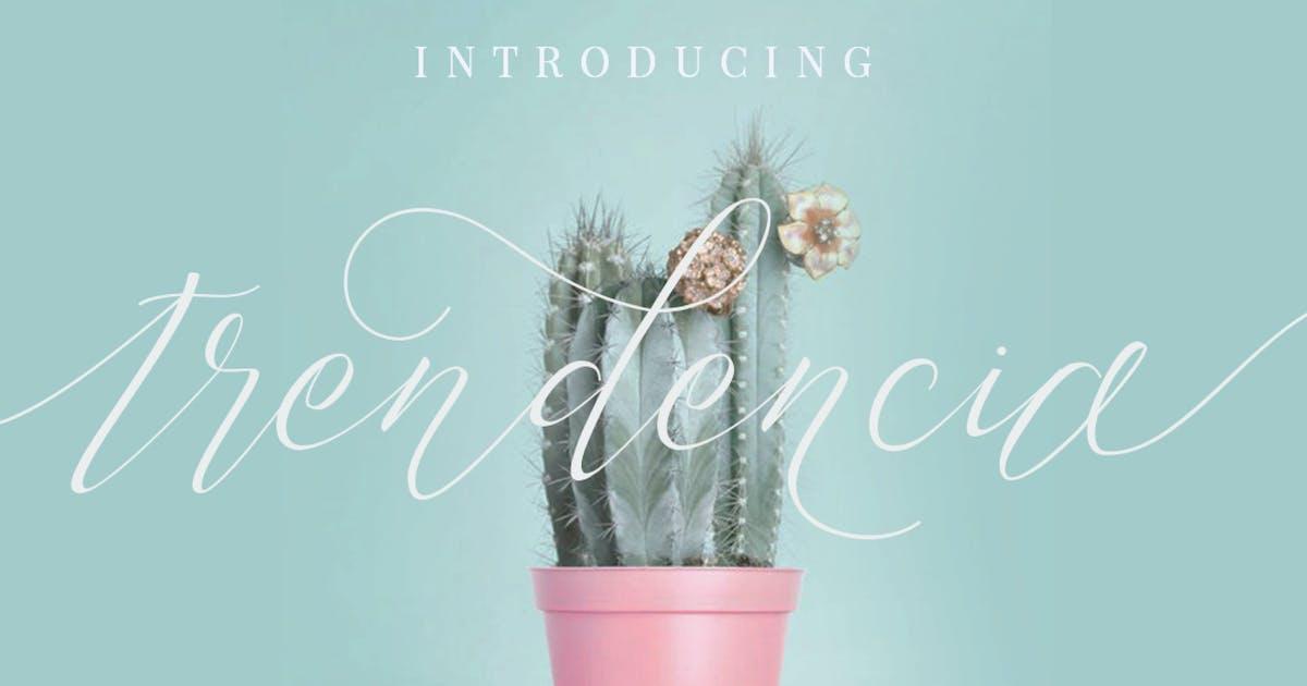 Download Trendencia Script Elegant Luxury Font by dirtylinestudio