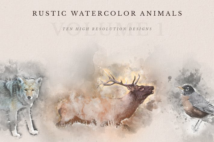 Thumbnail for Rustic Watercolor Animals - Volume 1