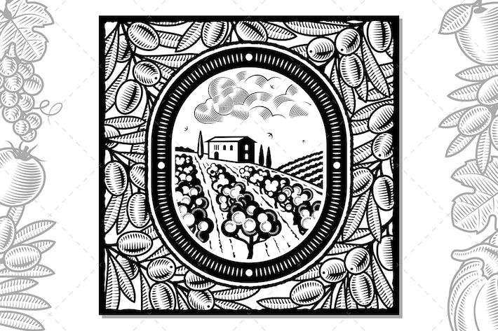 Thumbnail for Olive Harvest Design Black And White