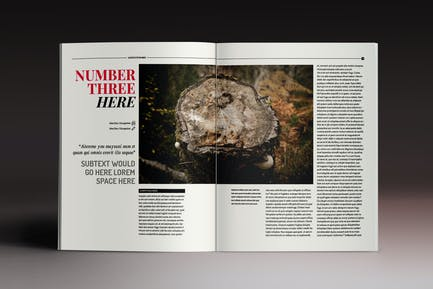 The Sober Magazine Indesign Template