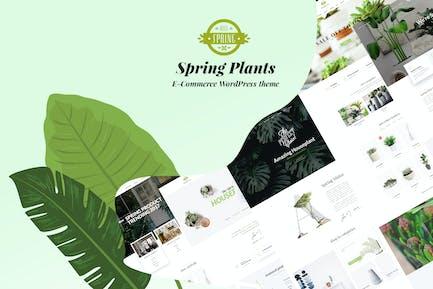 Spring Plants - Gardening & Houseplants WordPress