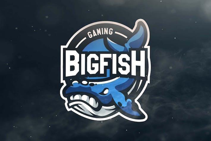 Thumbnail for Bigfish Gaming Sport and Esports Logos