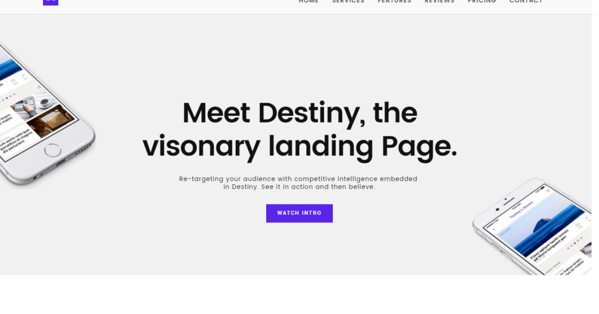 Download Destiny Landing Page Template by YDirectionThemes