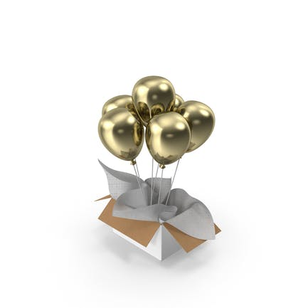 Gold Balloons Gift Box