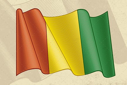 Vintage Flag Of Guinea