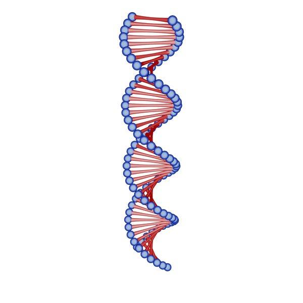 Thumbnail for DNA Cartoon