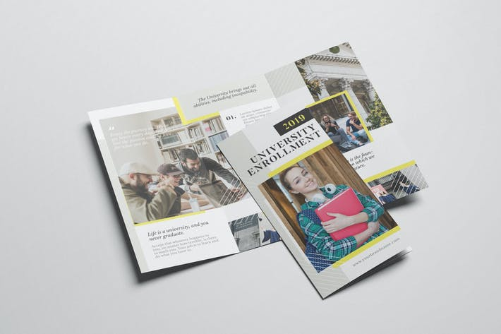 University Enrollment AI and PSD Trifold Brochure