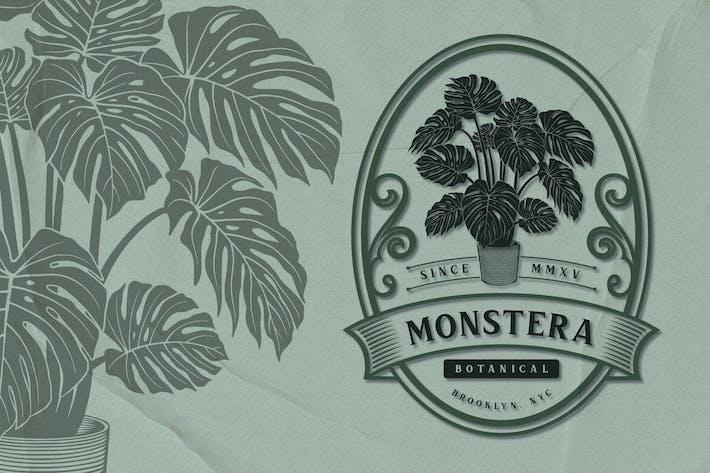 Monstera - Botanisches Emblem