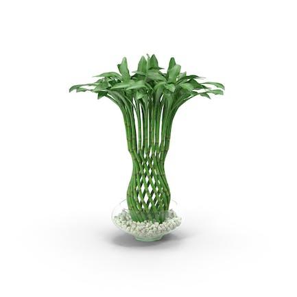 Gewebte Bambus Zimmerpflanze