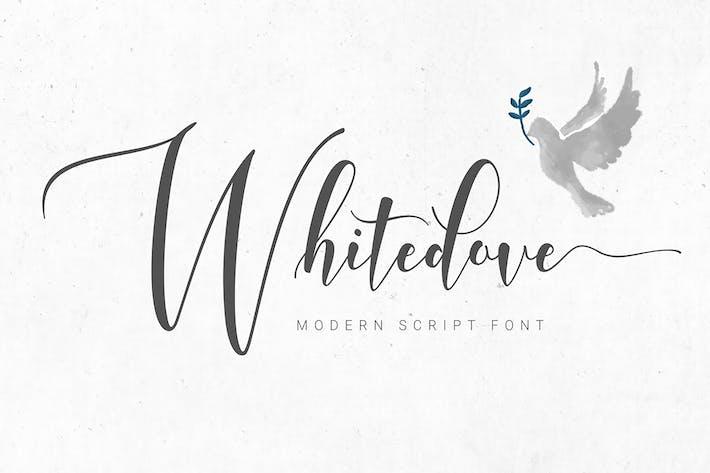 Thumbnail for Whitedove Modern Script